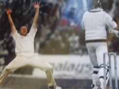 Flintoff celebrates  glossy photograph